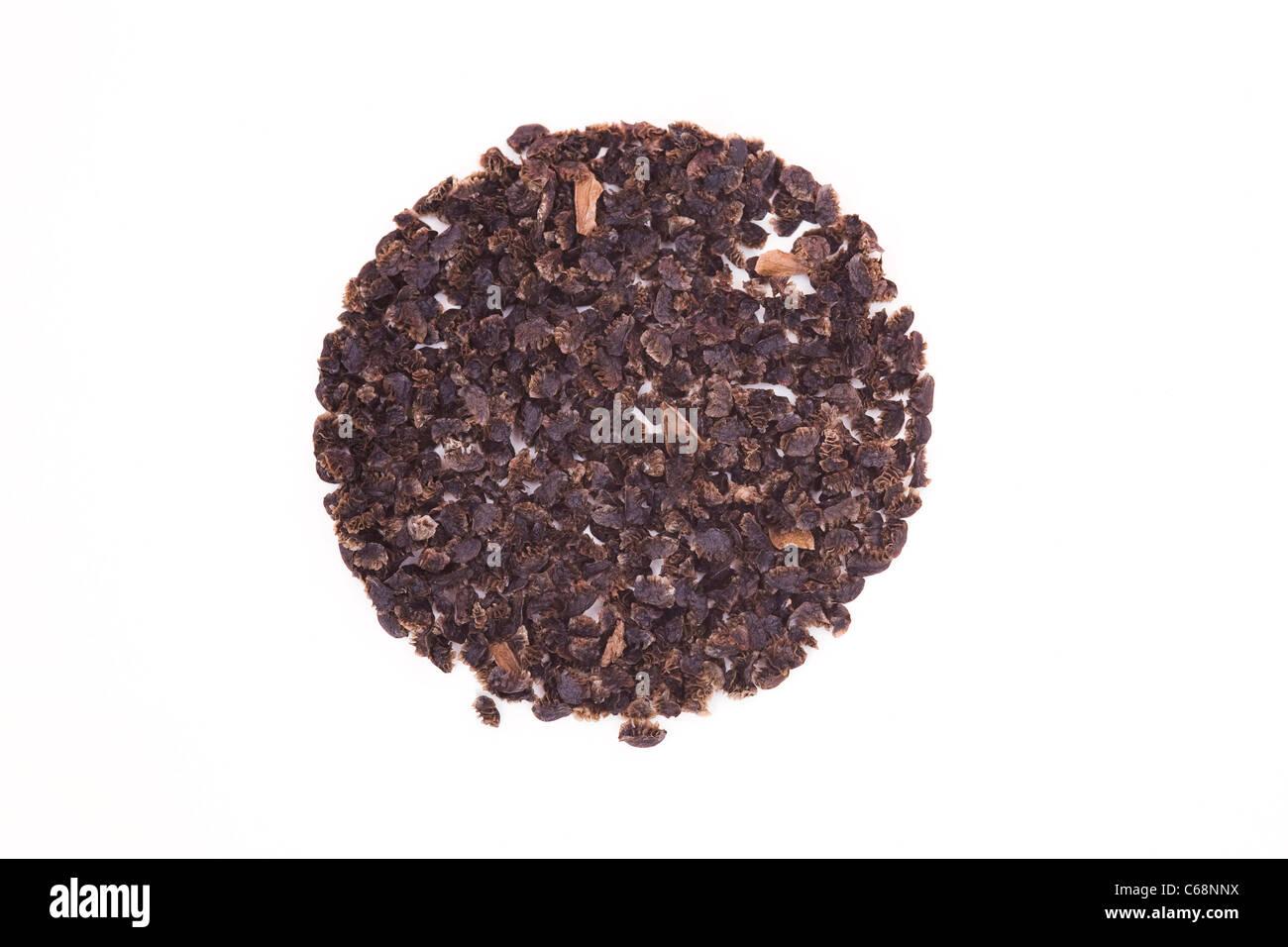 Aconitum. Monkshood seeds on a white background. - Stock Image