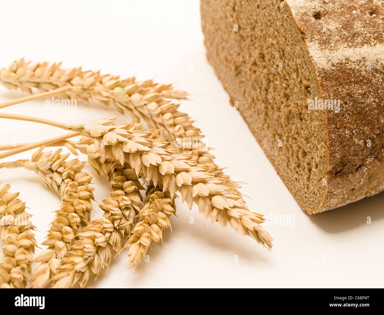 ein halbes Schwarzbrot, davor liegen Weizenähren | one halve Brown Bread, in front are wheat ears - Stock Image