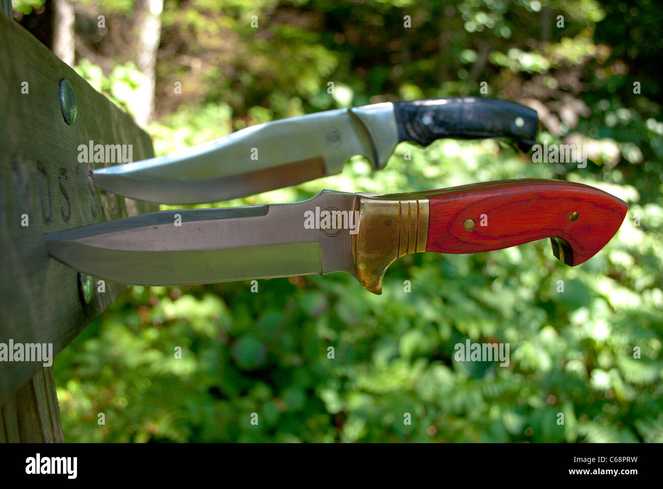 Two knives in the wood. - Stock Image