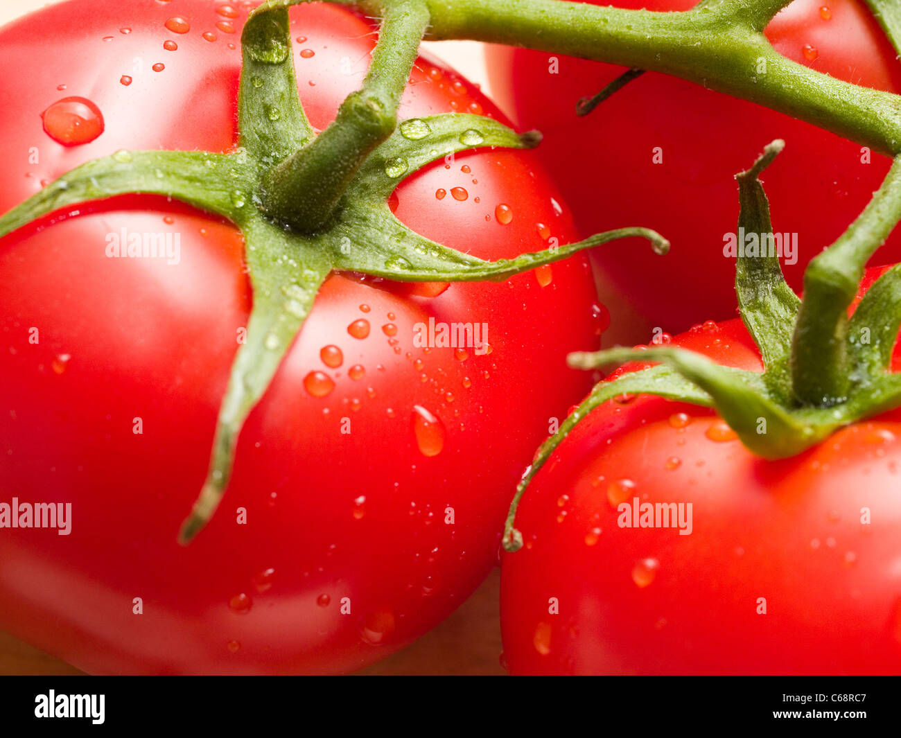 Detailaufnahme von nassen Tomaten | Detail photo of wet tomatoes Stock Photo