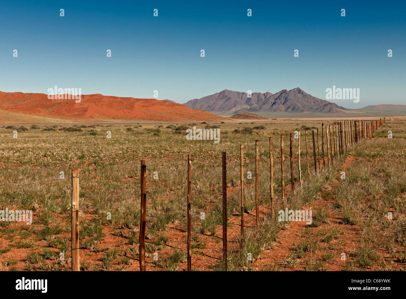 endless fence in desert landscape, secondary road D 707, Namibia, Africa - Stock Image