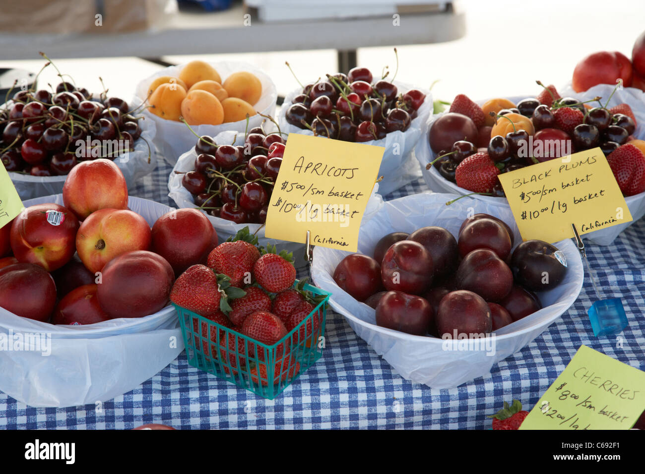 farmers market fruit stall with fresh fruits on sale Saskatoon Saskatchewan Canada Stock Photo