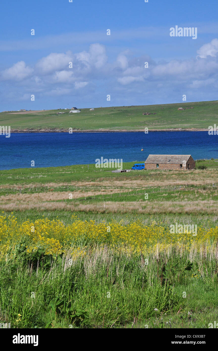 The farm cottage and pasturage at the Island of Hoy, Orkney, Scotland. - Stock Image
