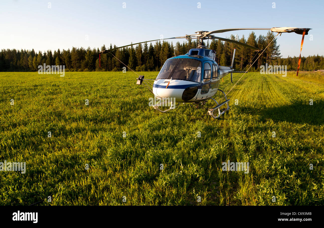 Helicopter landed to a field , Finland - Stock Image