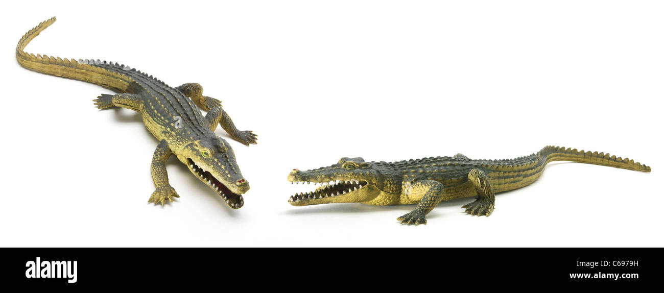 Rubber Crocodiles - Stock Image