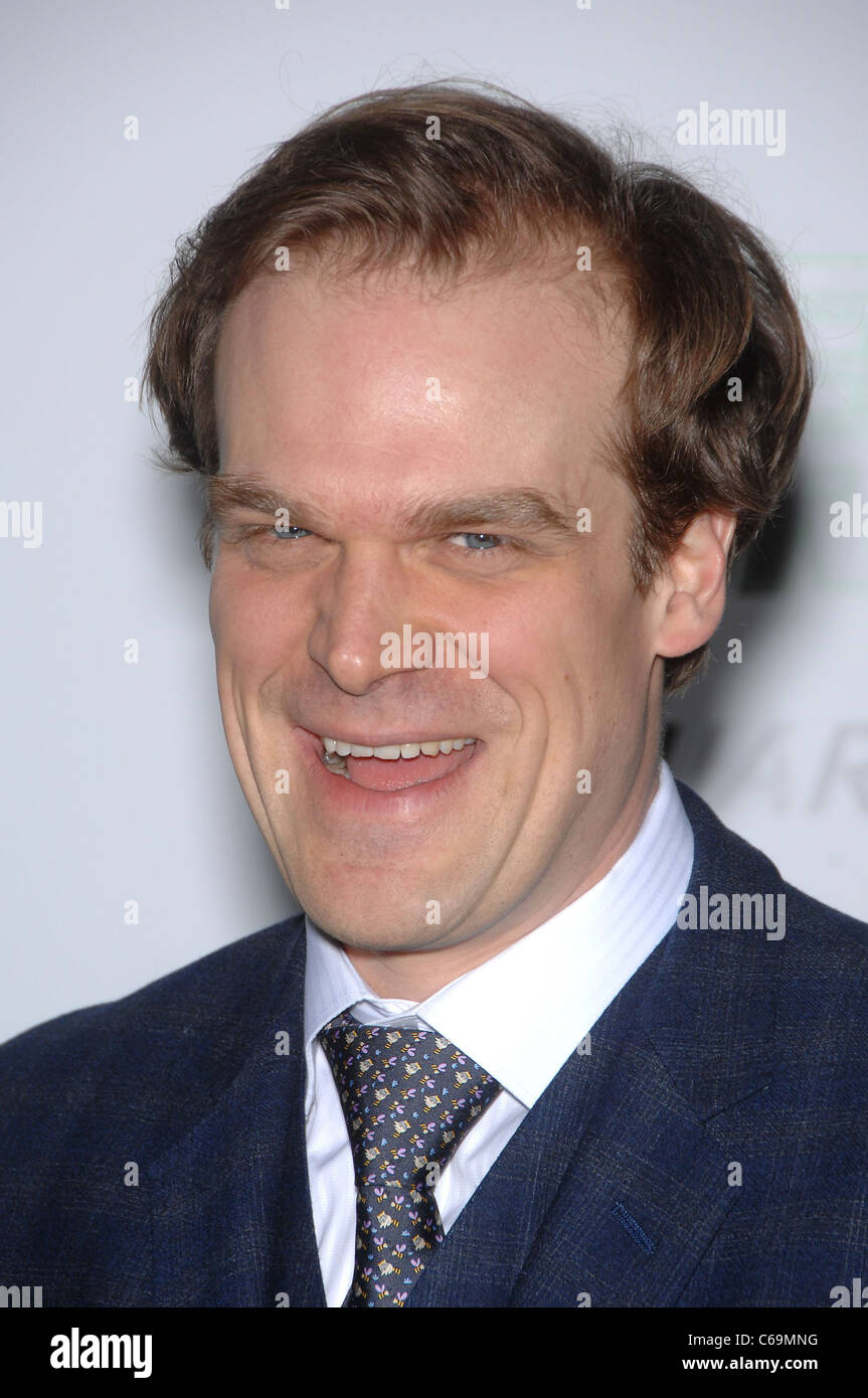 David Harbour at arrivals for THE GREEN HORNET Premiere, Grauman's Chinese Theatre, Los Angeles, CA January - Stock Image