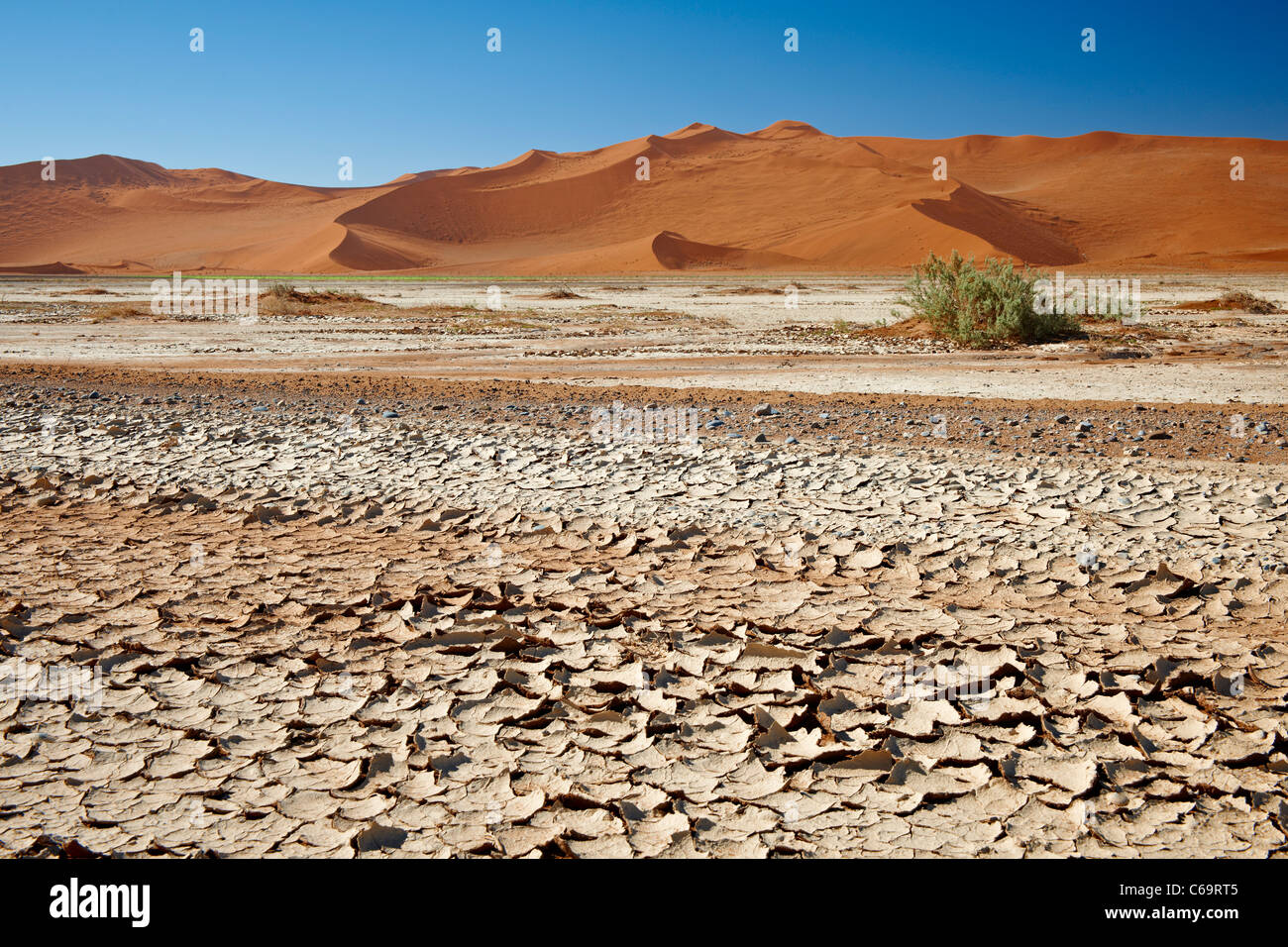 parched bursted ground and dunes in desert landscape of Namib at Sossusvlei, Namib-Naukluft National Park, Namibia, - Stock Image