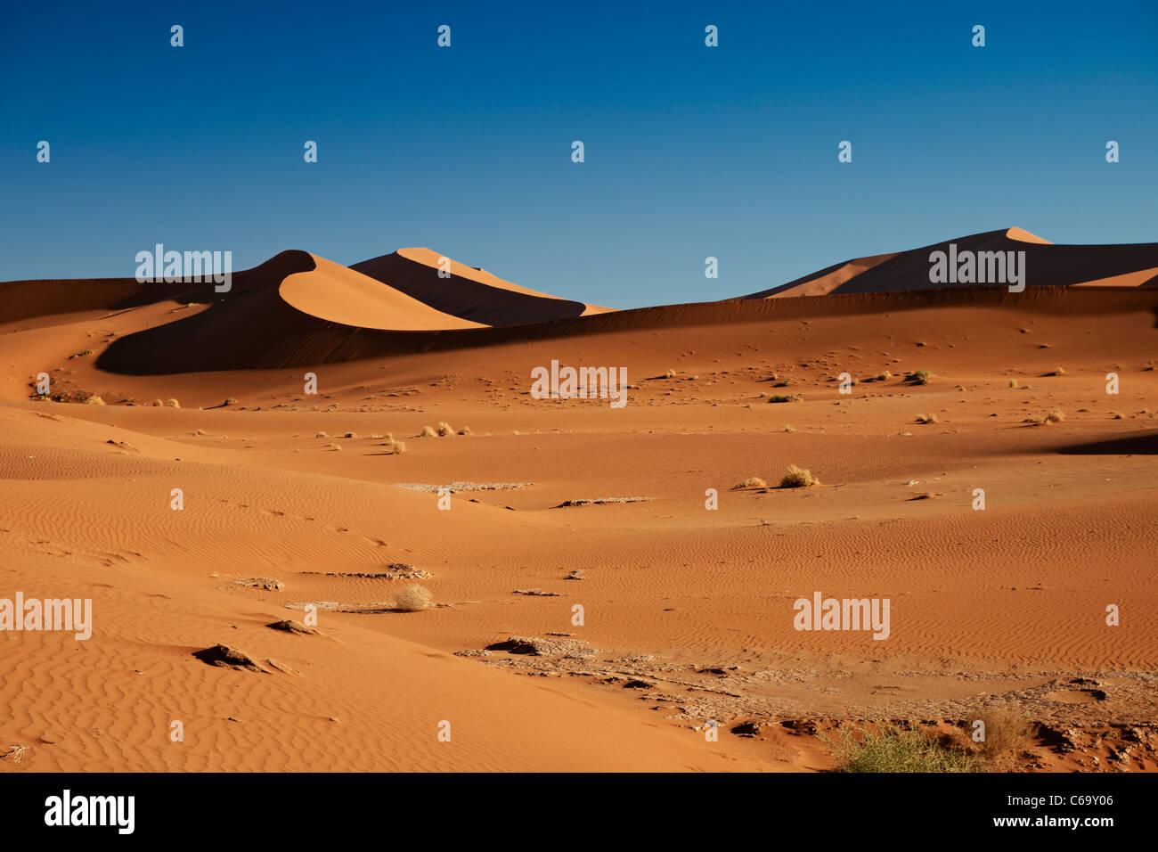 desert landscape of Namib at Sossusvlei, Namib-Naukluft National Park, Namibia, Africa - Stock Image