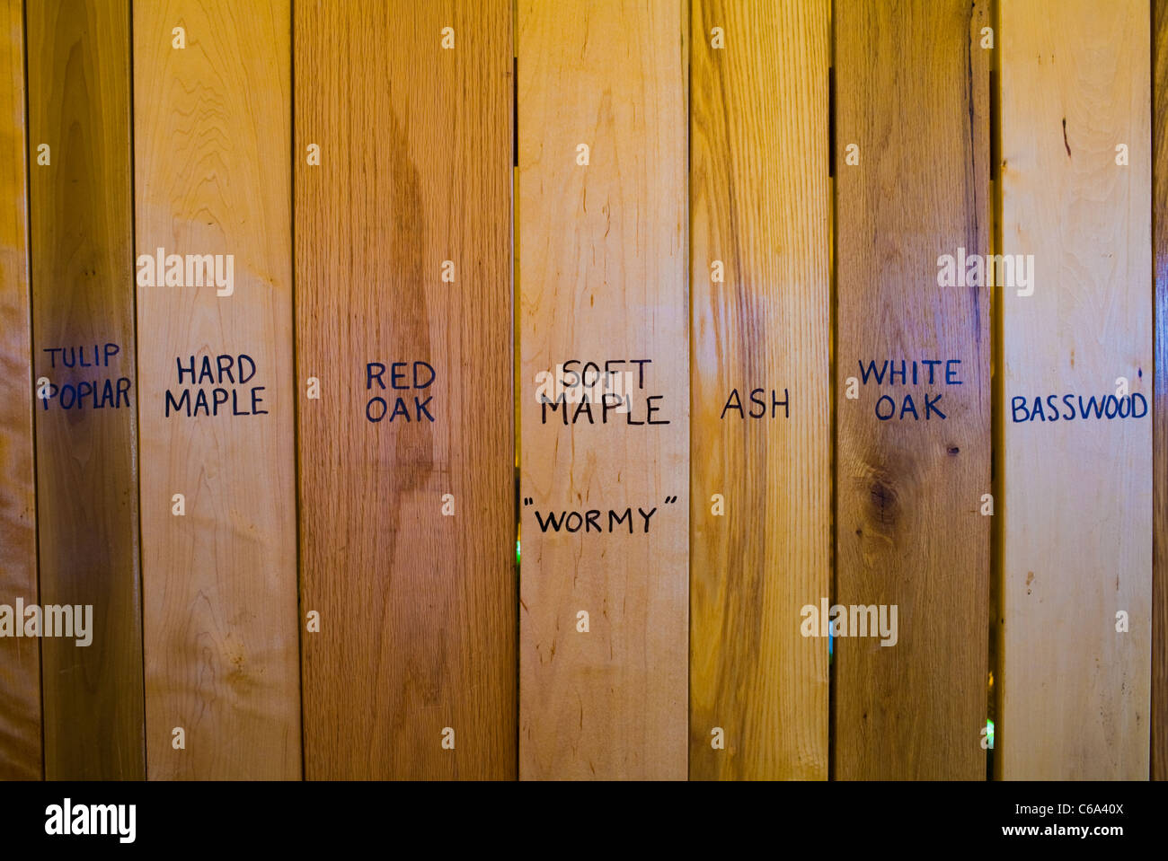 Wood display at Woodsmen's Field Days, Boonville, Adirondacks, New York State - Stock Image