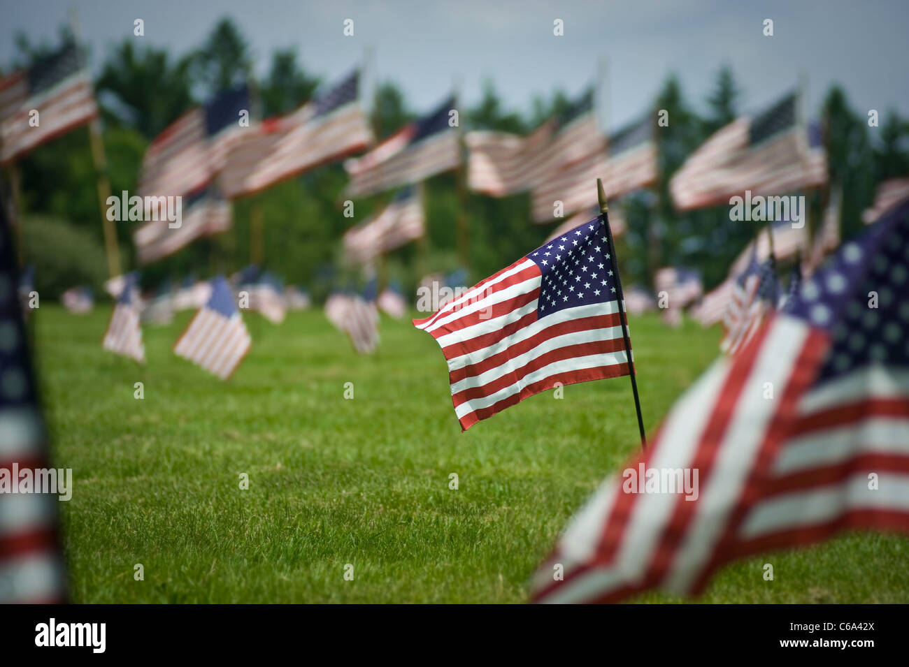 American Flags In Veterans Cemetery On Memorial Day, Pennsylvania, USA - Stock Image