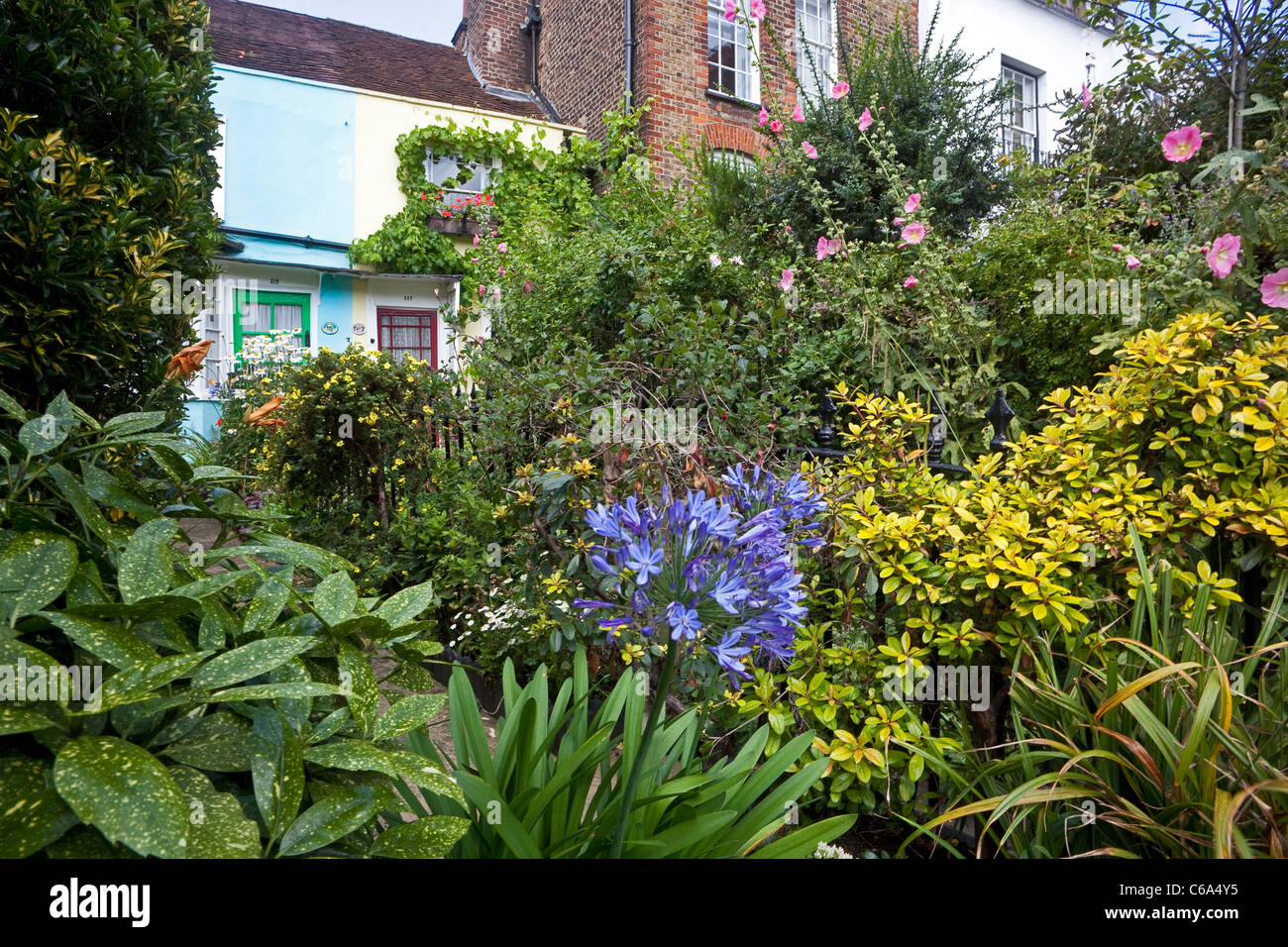 Magnificent London Hampstead A Cottage Garden In Heath Street August Download Free Architecture Designs Ponolprimenicaraguapropertycom