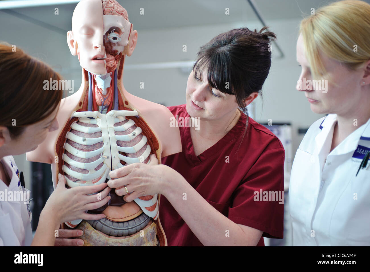 female white student nurses and teacher interacting with human anatomy anatomical model - Stock Image
