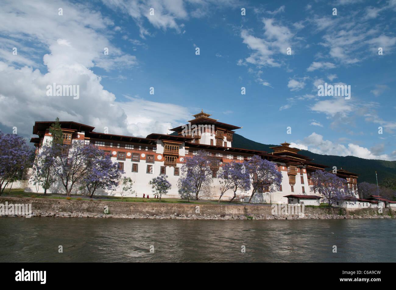 view of the Dzong in Punakha. bhutan - Stock Image