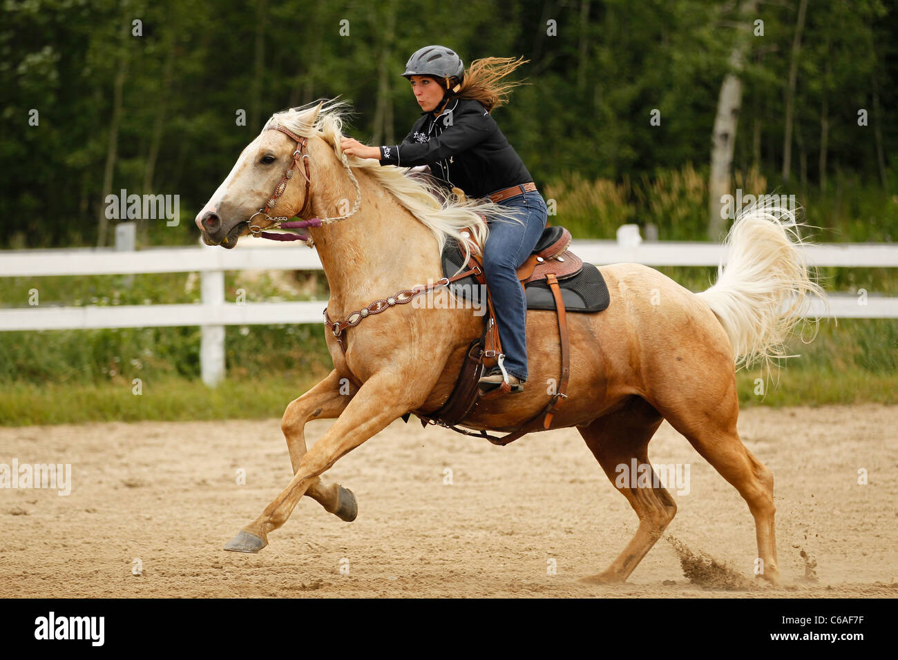 Palomino Horse And Female Rider Galloping In Western Gaming Race Stock Photo Alamy