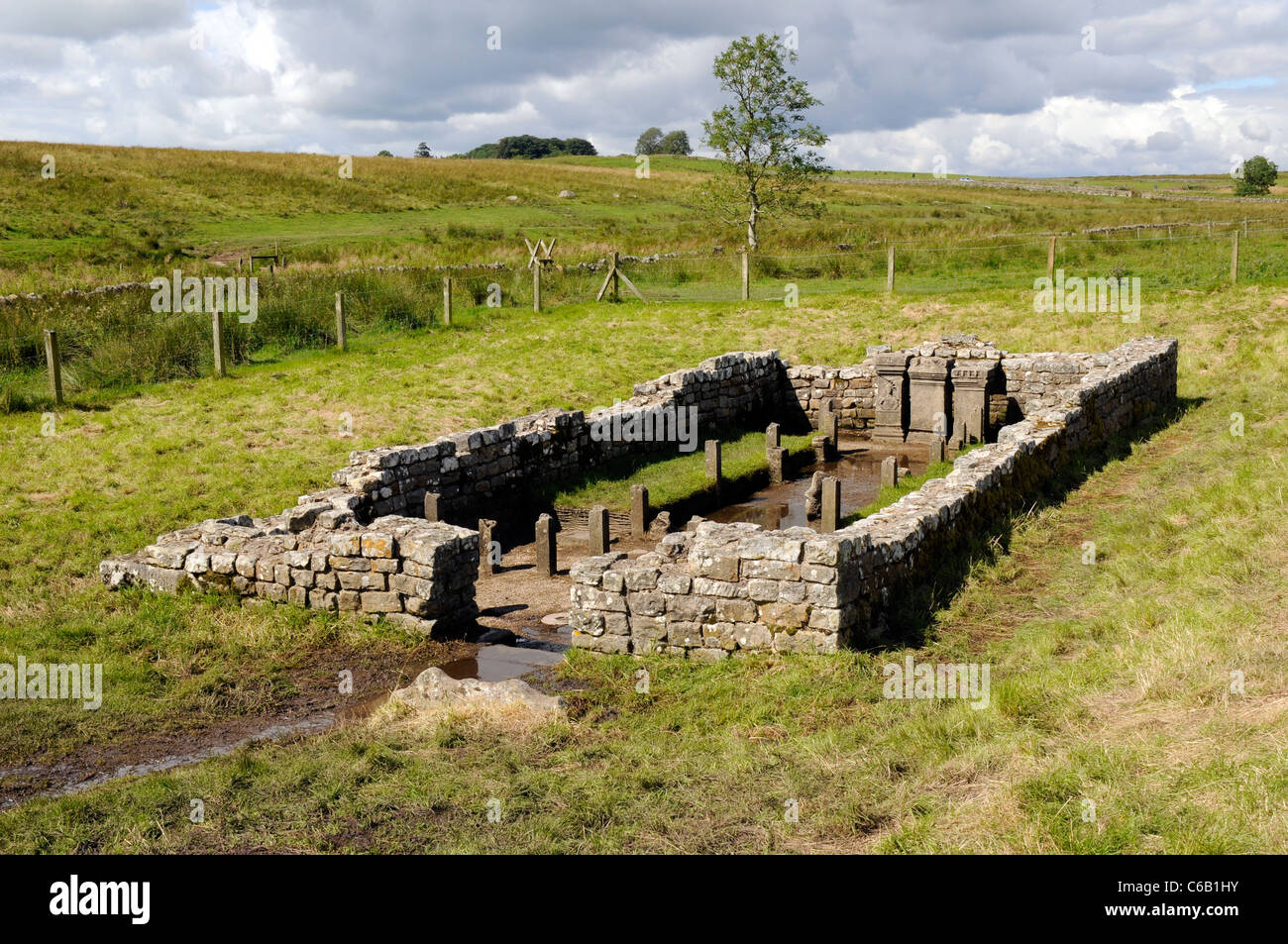 Temple of Mithras, Carrawburgh, Hardian's Wall - Stock Image