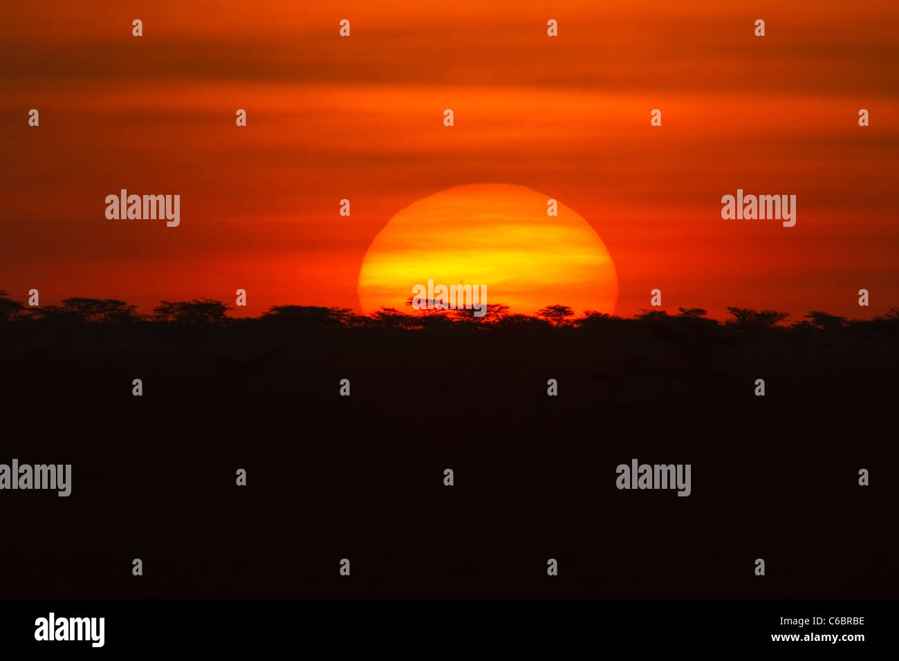 Sunset over savanna Ethiopia. - Stock Image