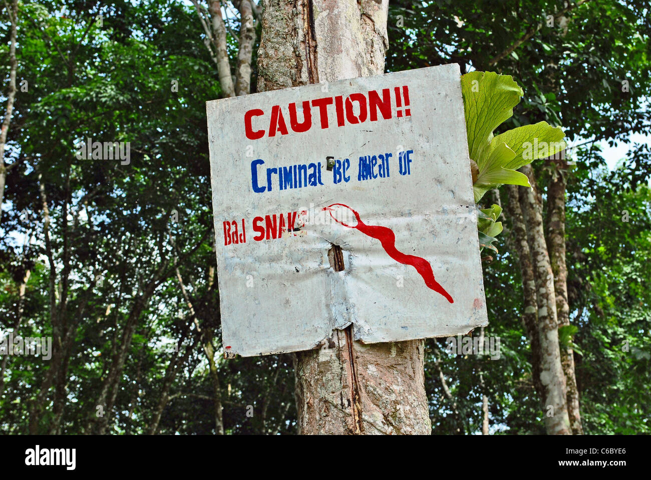 Beware of Snakes sign to deter trespassers on a rubber plantation in Liberia, West Africa - Stock Image