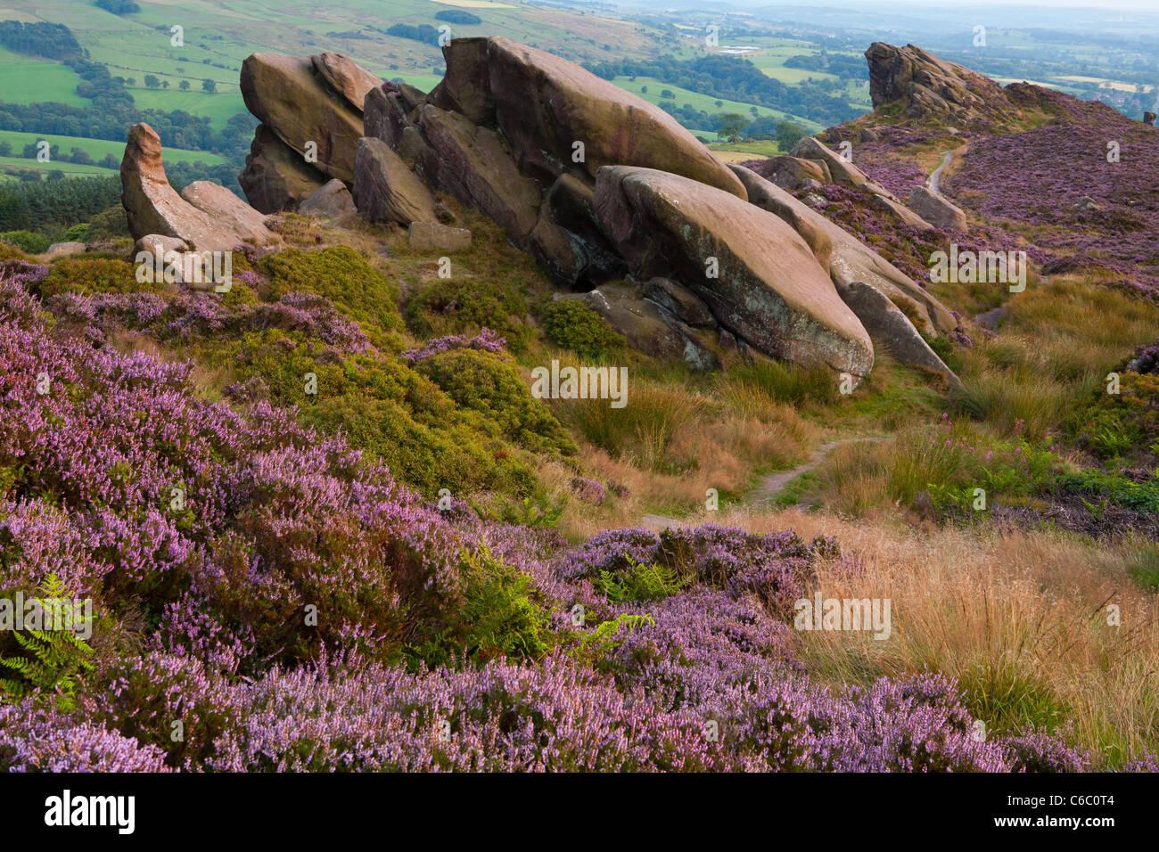 Ramshaw Rocks, near Leek, Staffordshire Moorlands, Peak District National Park - Stock Image