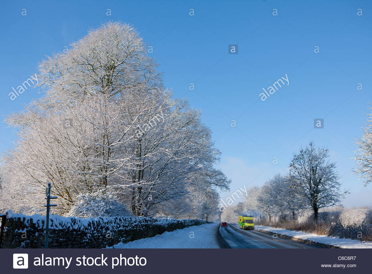 Snow covered trees lining road with traveling cars - Stock Image