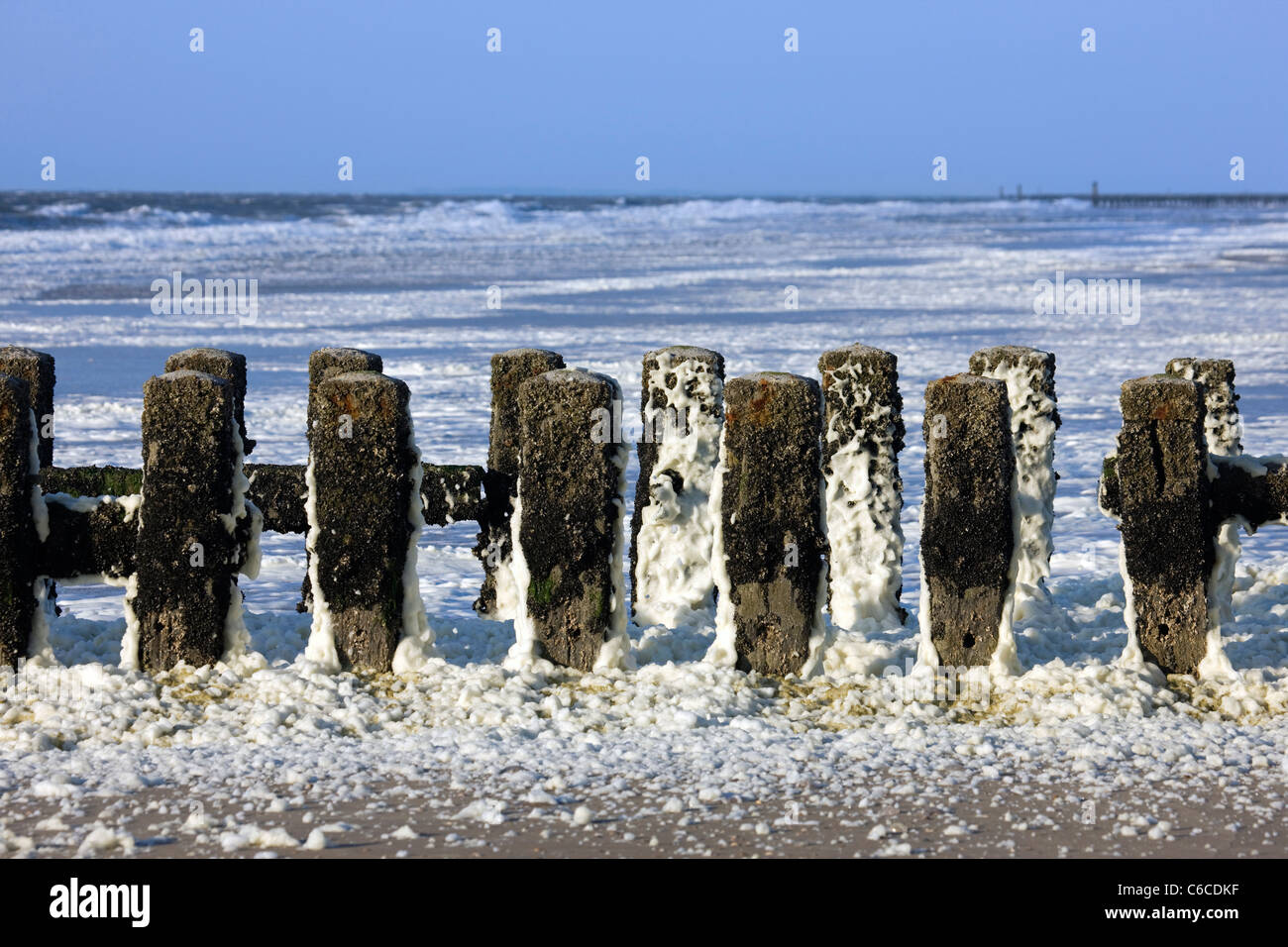 Wooden breakwater covered in sea foam / ocean foam / beach foam formed during stormy conditions and following an - Stock Image