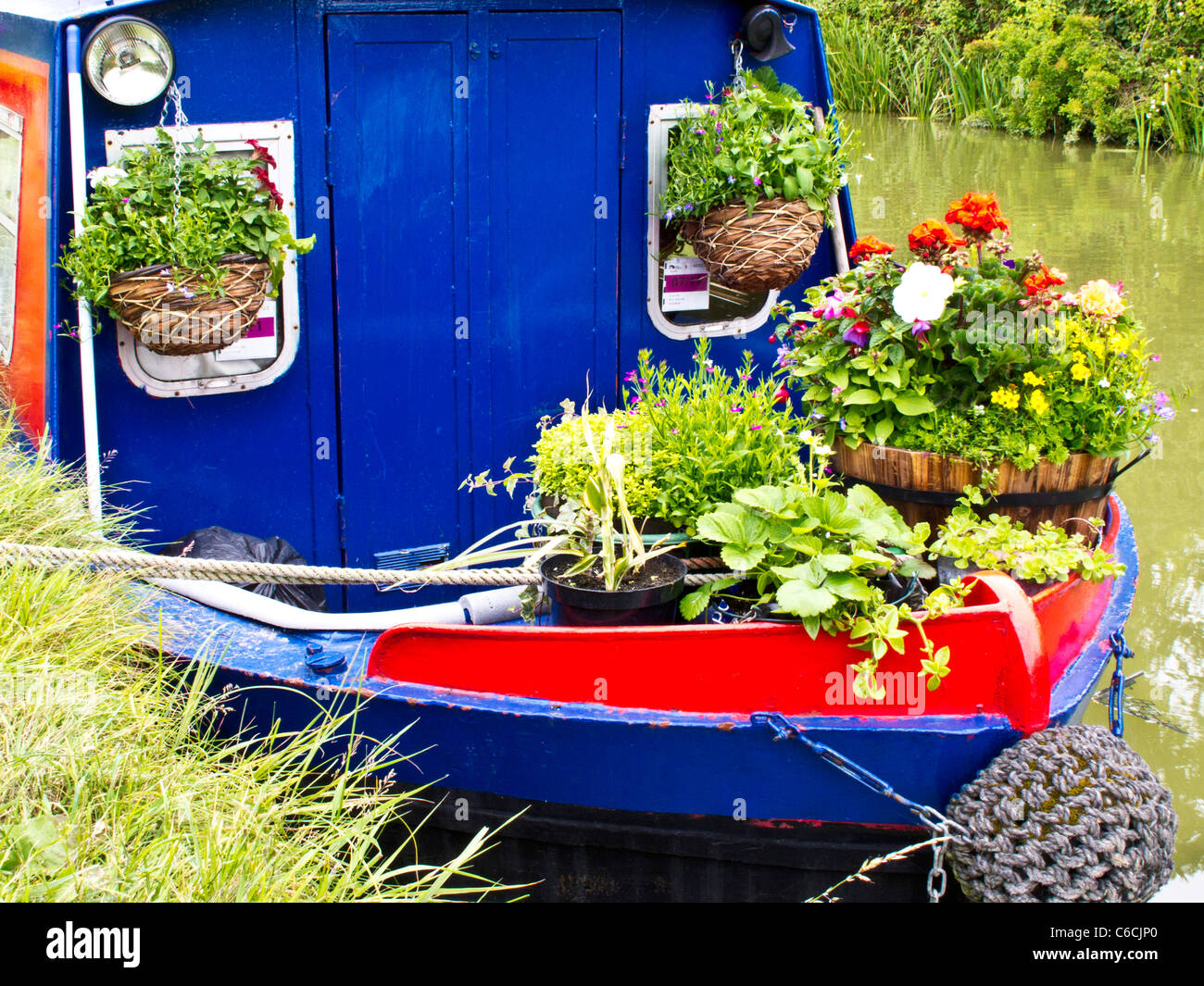 The colourful prow of a narrowboat with plant containers and flower pots moored along a canal bank - Stock Image