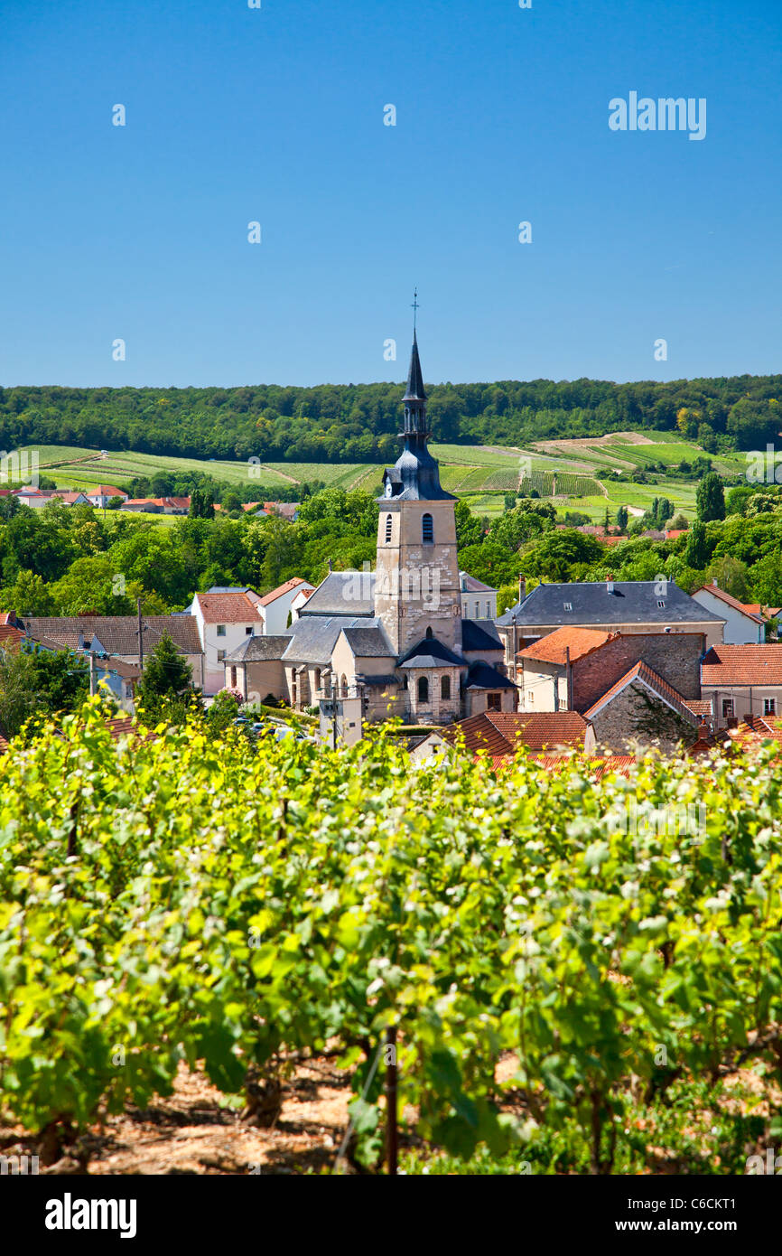 France, Marne, Sermiers, a village close to Reims associated with Champagne wine - Stock Image