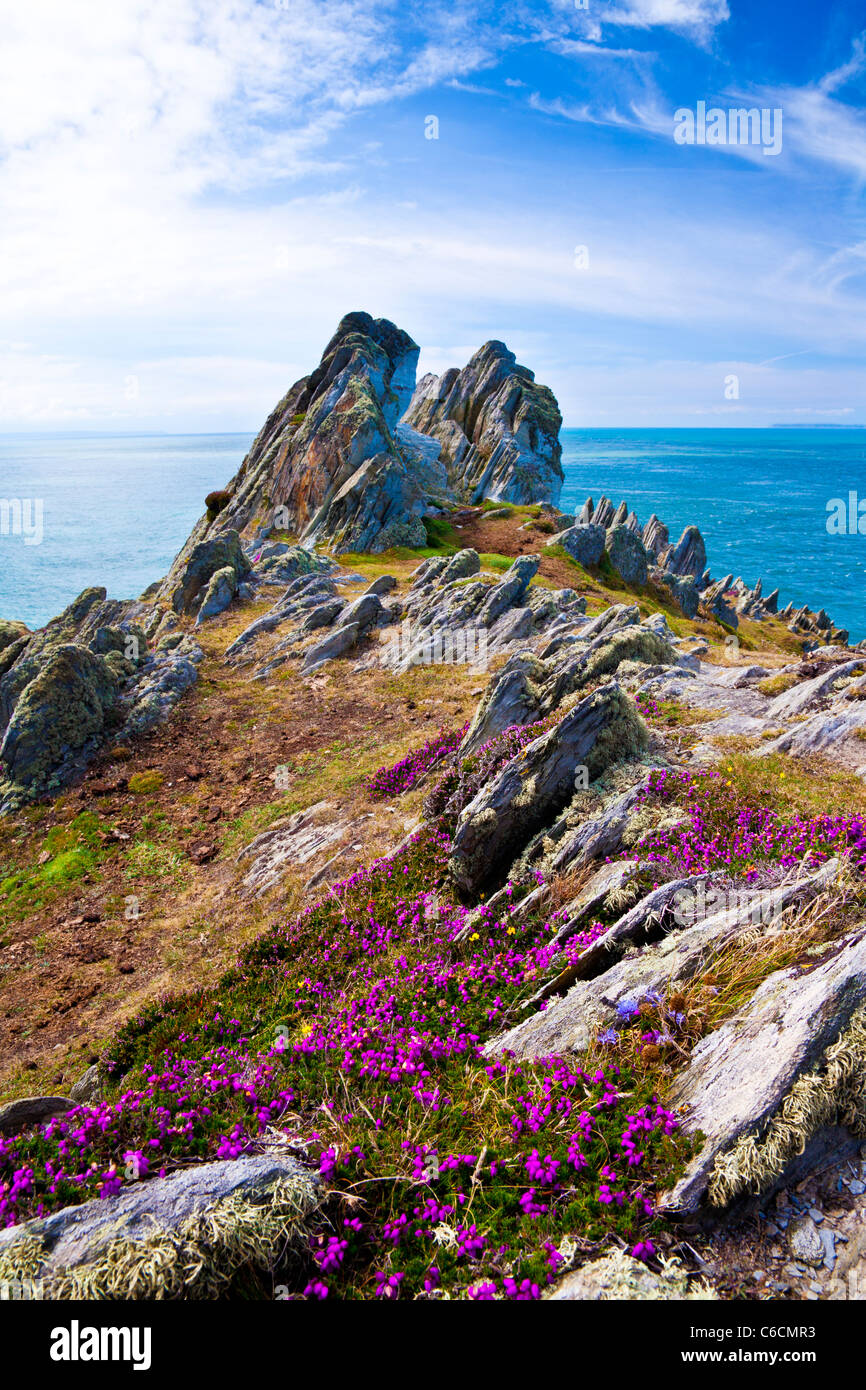 Morte Point near Morthoe, Woolacombe with a view over the Bristol Channel, North Devon, England, UK - Stock Image