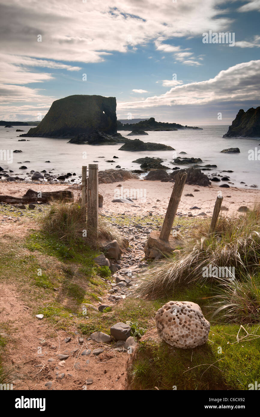 Elephant Rock, Ballintoy,  Co Antrim in Northern Ireland. - Stock Image