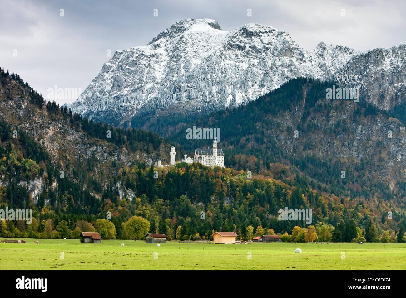 Neuschwanstein Castle, Bavaria, Germany, Europe - Stock Image