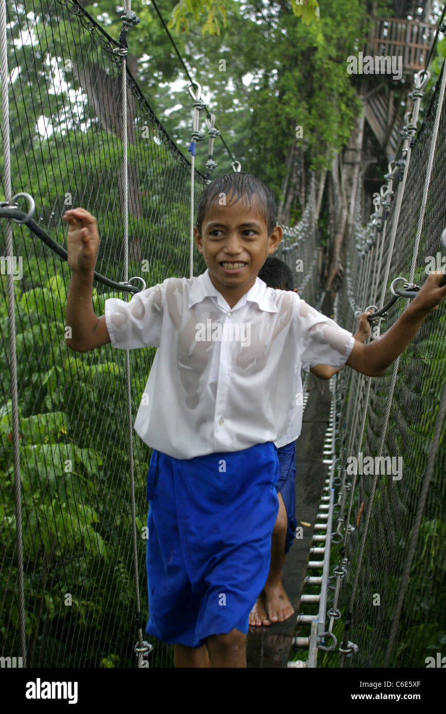 Young schoolboys tentatively cross the canopy walk during a downpour. Falealupo Rainforest Reserve, Vaisigano, Savai'i, - Stock Image