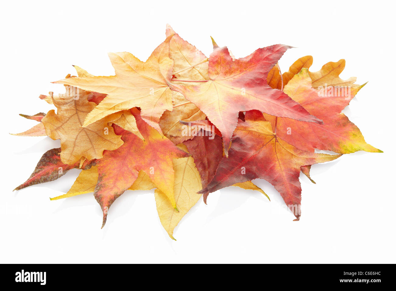Fallen autumn leaves heap Stock Photo