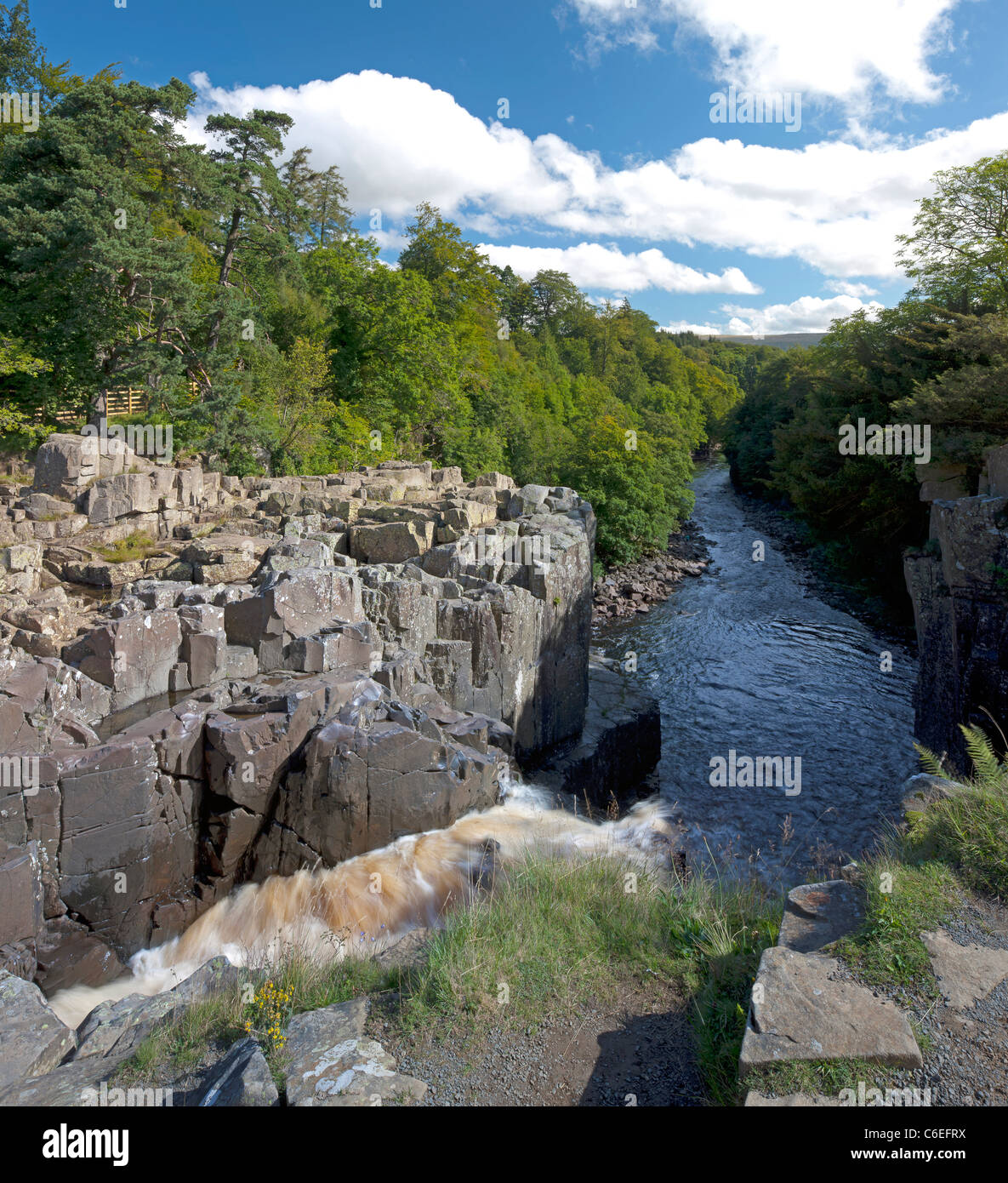 Gushing water of the River Tees, over High Force Waterfall in Teesdale, County Durham - Stock Image