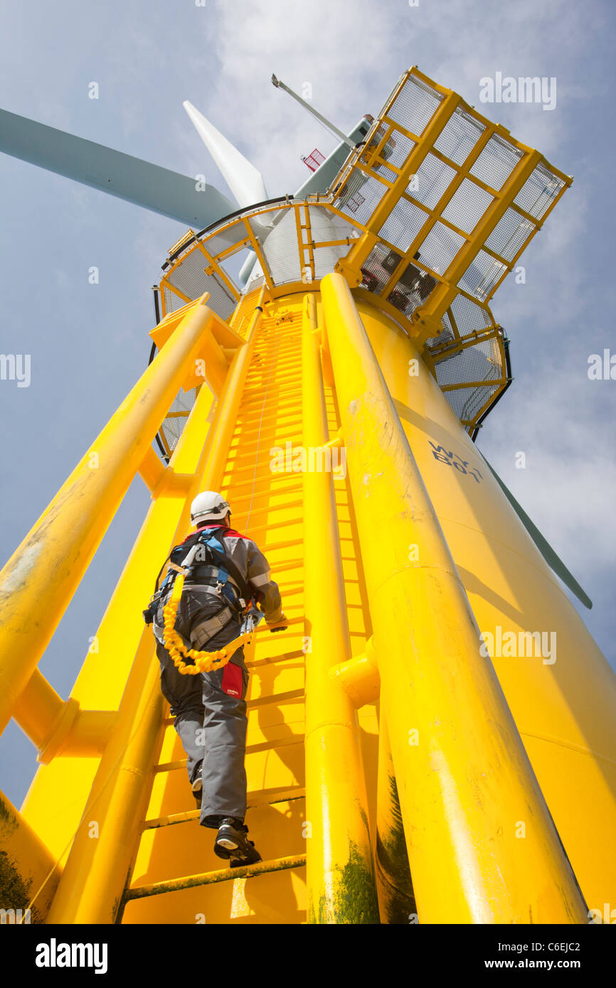 An engineer climbs a transition piece of a wind turbine on the Walney offshore wind farm - Stock Image