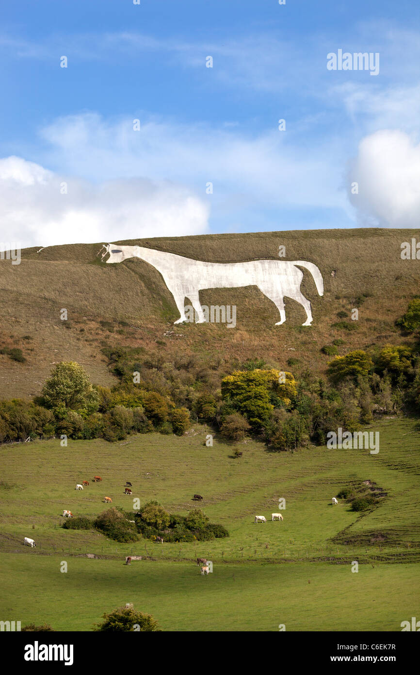 The White Horse at Westbury Stock Photo