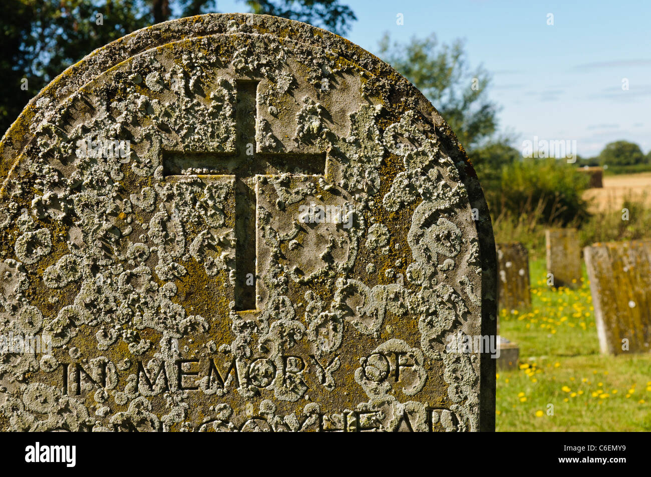 Lichen on a very old gravestone - Stock Image