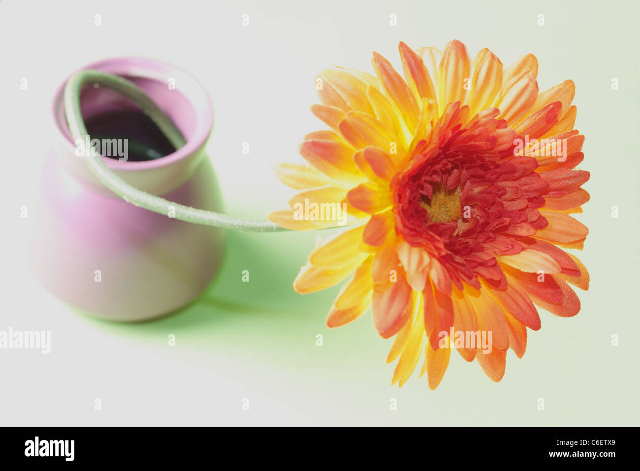 Flower in vase Stock Photo