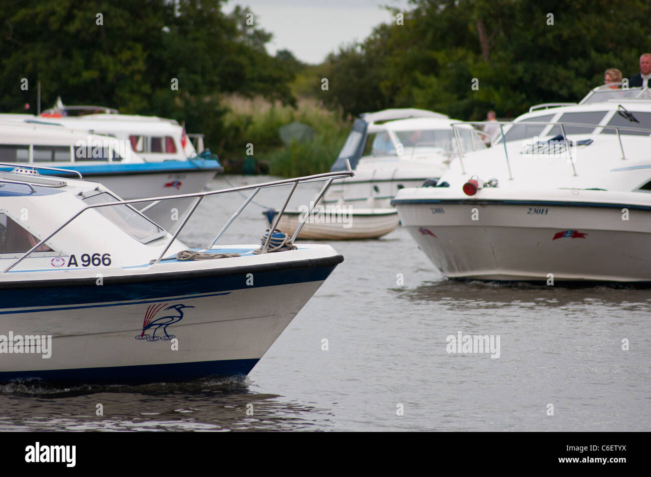 Busy river scene Hire boats cruisers on Norfolk Broads - Stock Image