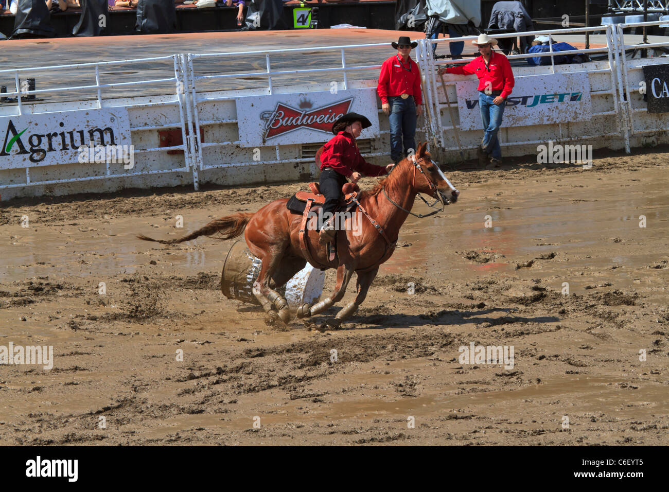 Barrel Racing at the Calgary Stampede. A competitor knocks over a barrel, adding a 5 second penalty to her time - Stock Image