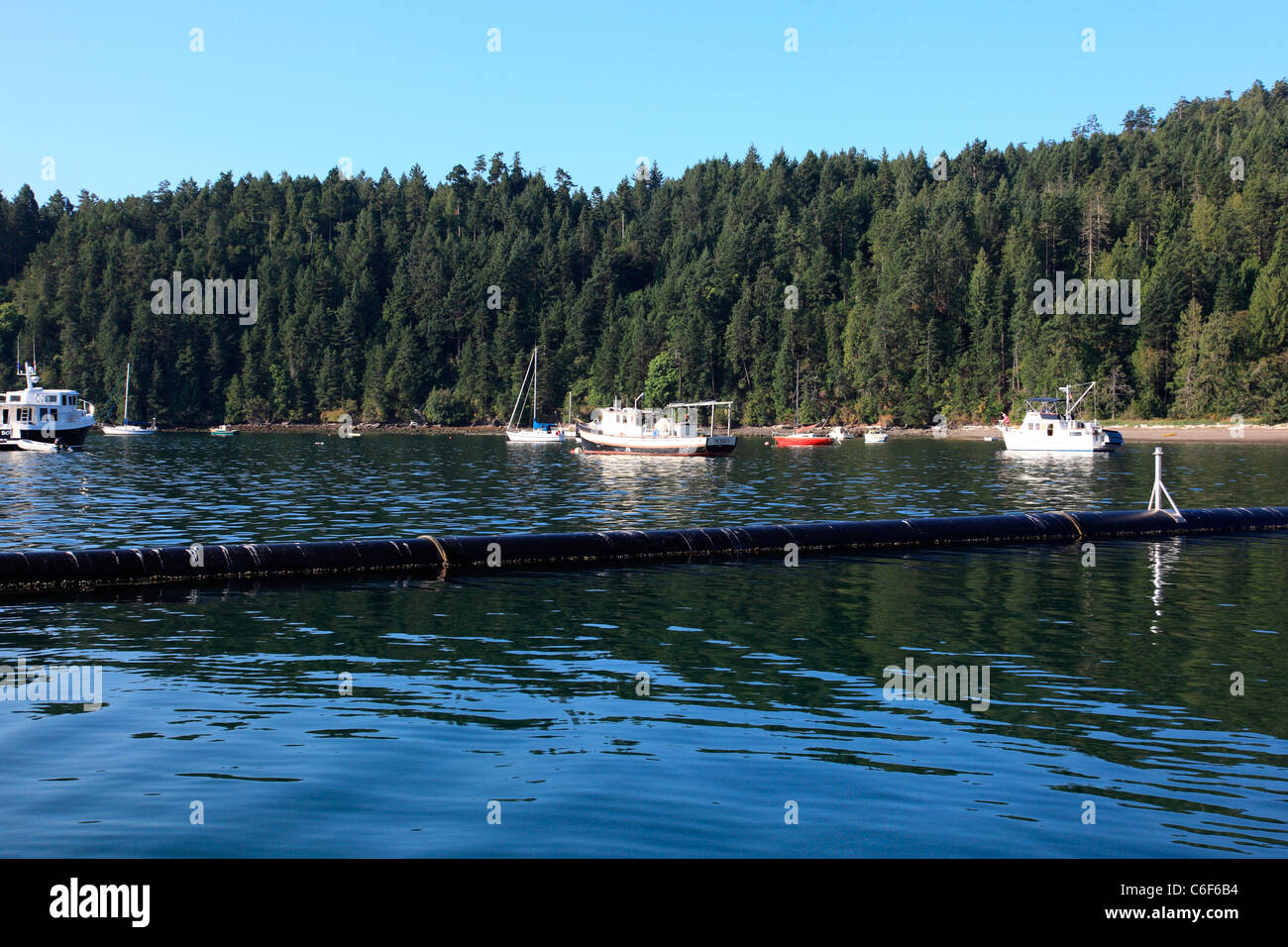 Boats anchored just outside of Port Browning Harbour on Pender island BC Canada with a small breakwater between Stock Photo
