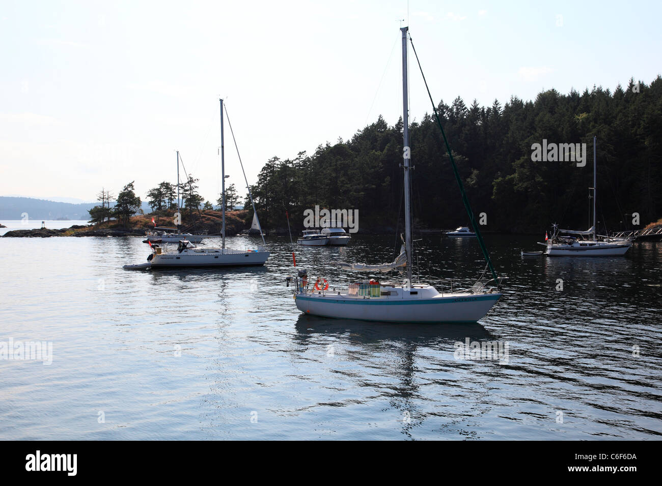 Sailboats anchored in front of Portland Island. - Stock Image