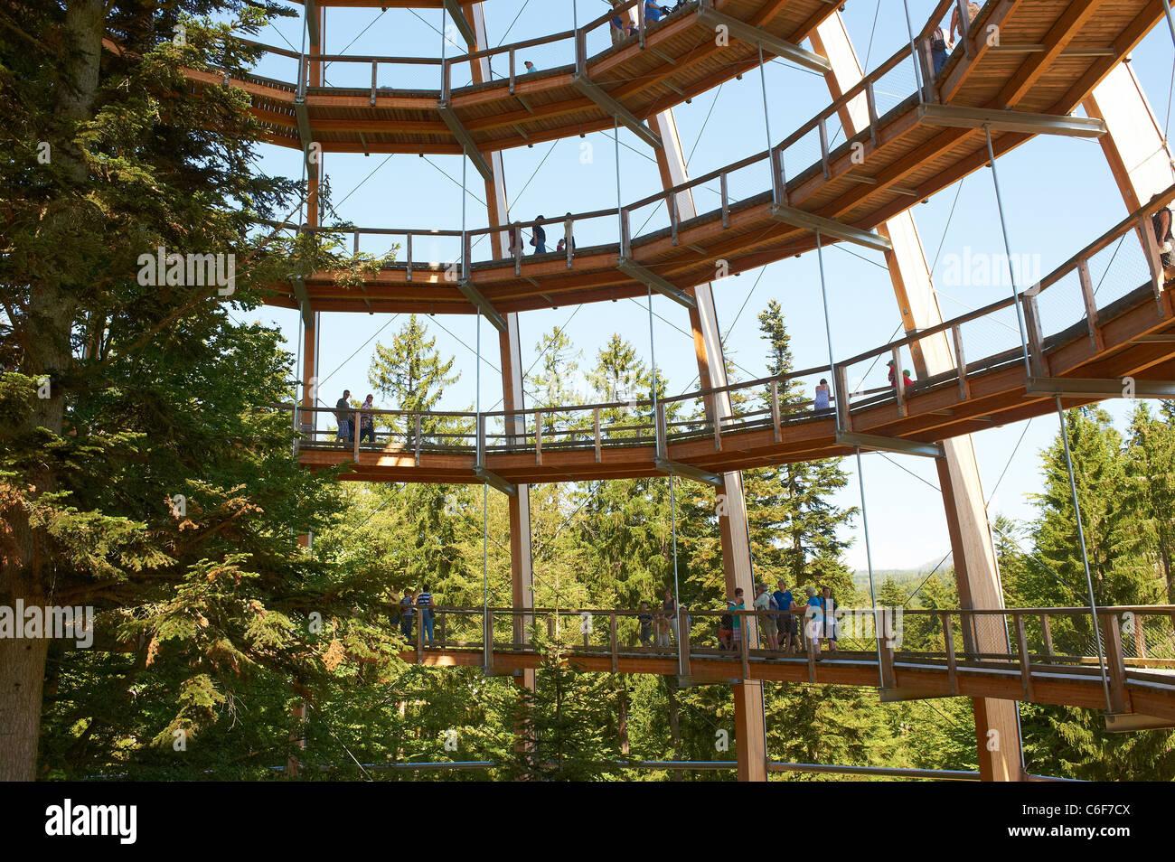 The world´s longest tree top walk - Tree Tower - Bavarian Forest National Park - Neuschönau Stock Photo