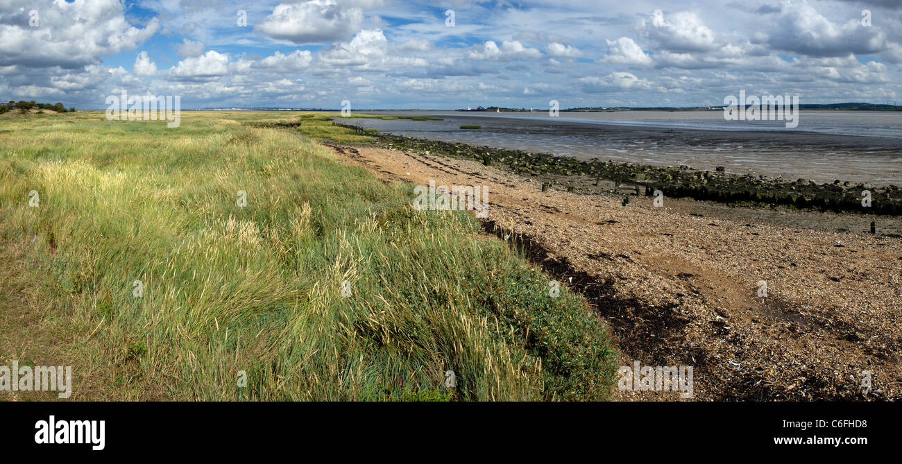 A panoramic view of the foreshore of the River Thames. - Stock Image