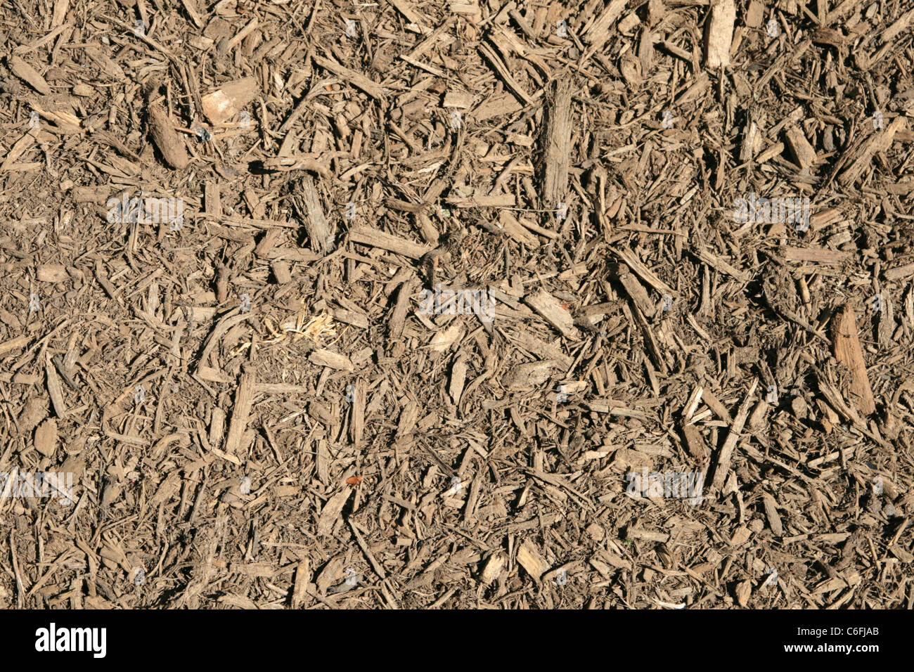 shredded wood chip mulch background texture Stock Photo