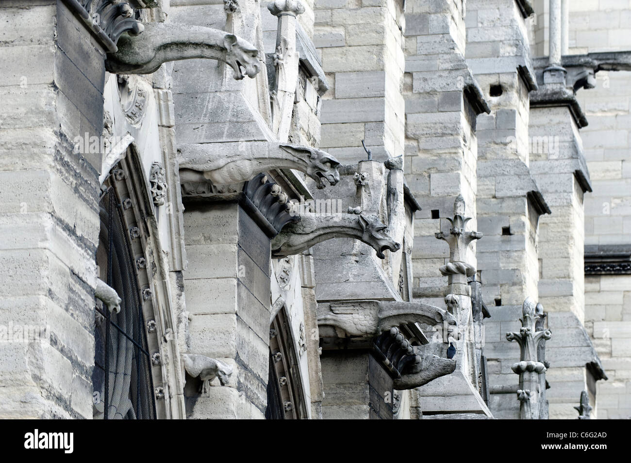 Gargoyles of Notre Dame Cathedral, Paris, France - Stock Image