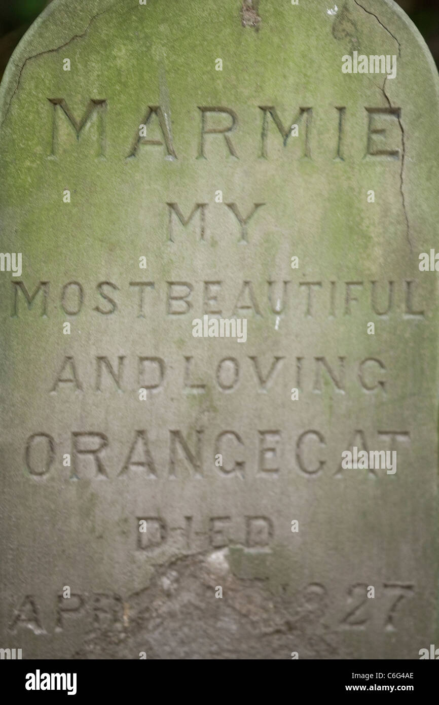 Cat's gravestone, Peckover House, Wisbech - Stock Image