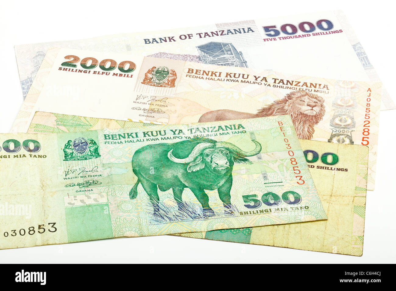 Tanzanian currency on a white background - Stock Image