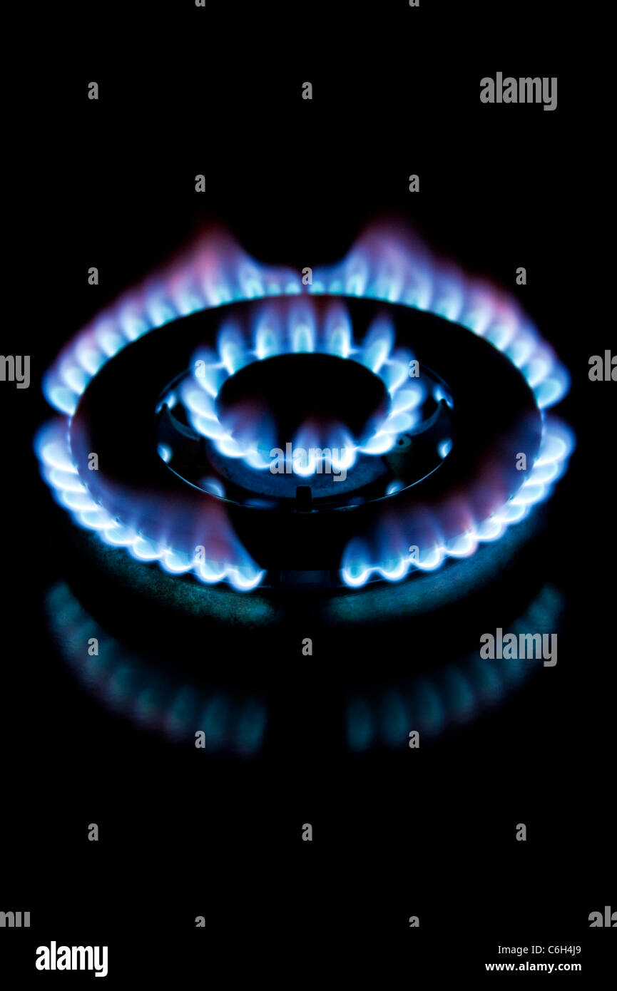 Attractive Flame from a gas cooker on a black background - Stock Image