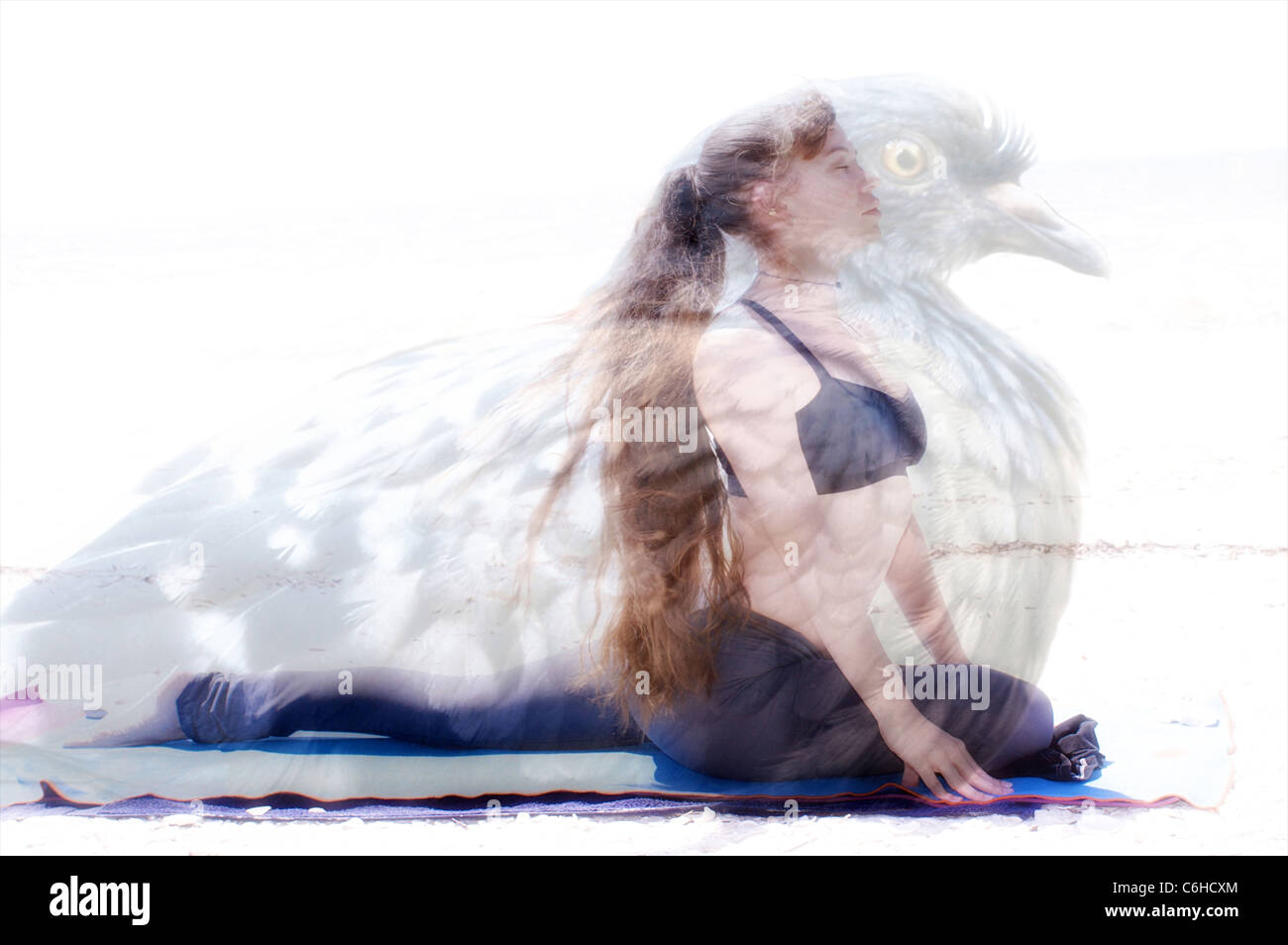 A woman is in yoga pigeon pose with image of actual pigeon superimposed - Stock Image