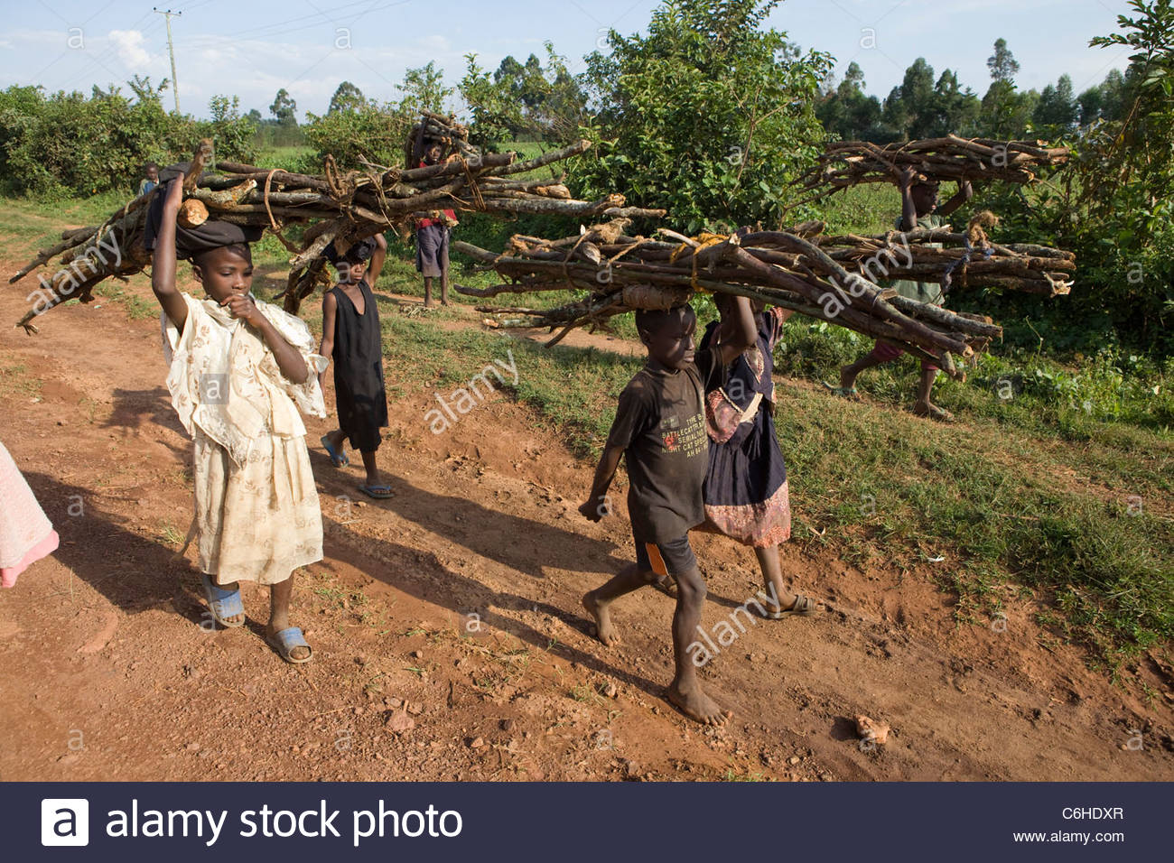 Children walking along a sand road carrying firewood on their heads - Stock Image