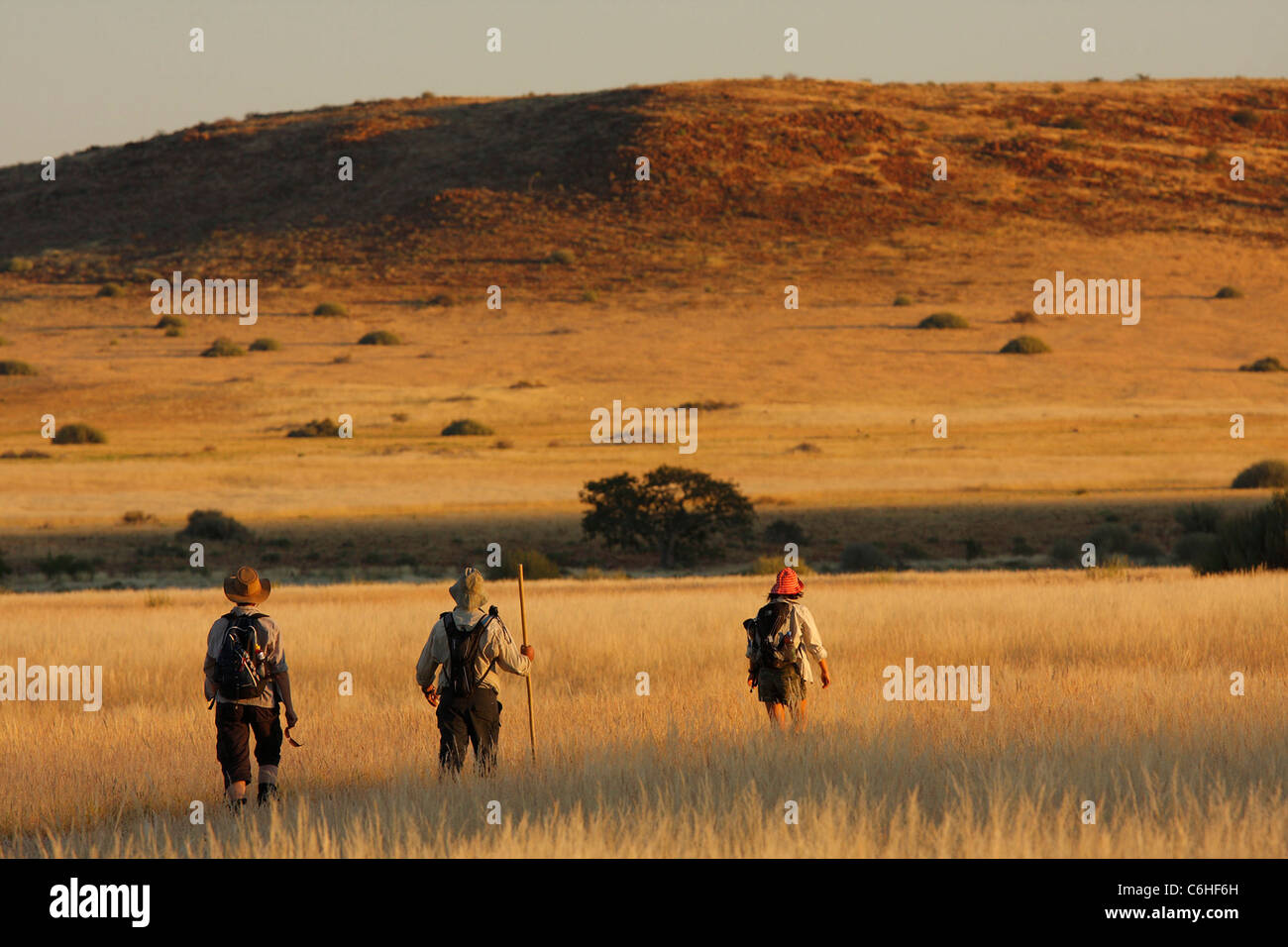 Hikers in desert landscape with bushman grass - Stock Image
